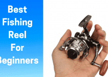 Best Fishing Reel For Beginners