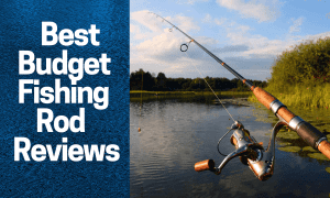 Best Budget Fishing Rod