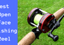 Best Open Face Fishing Reel