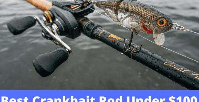 Best Crankbait Rod Under $100