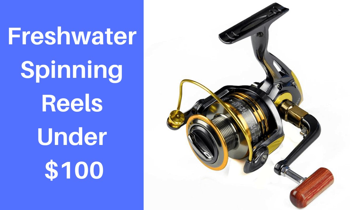 Freshwater Spinning Reels Under $100
