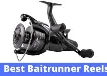 Best Baitrunner Reels