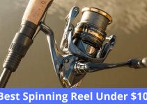 Best Spinning Reel Under $100